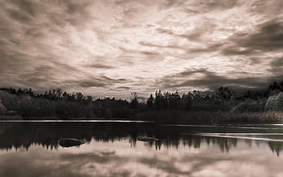 Horizontal Photograph - Green Timbers Park At Sunset - Sepia by Eva Kondzialkiewicz