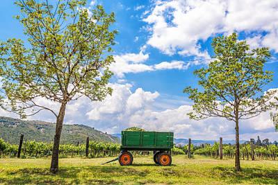 Wine Cart Photograph - Green Wagon And Vineyard by Jess Kraft