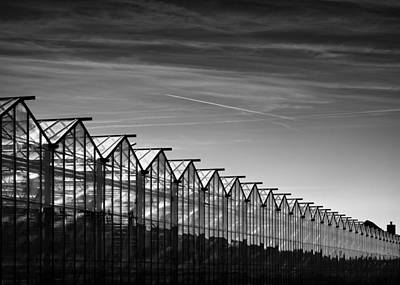 Greenhouses And Vapour Trails Print by Dave Bowman