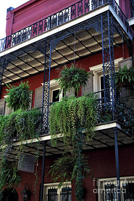 Greens In New Orleans Print by John Rizzuto