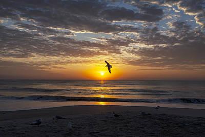 Greeting The Dawn Print by Lynn Palmer