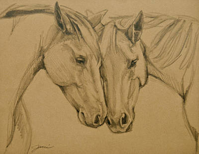 Horse Art Drawing - Greetings Friend by Jani Freimann