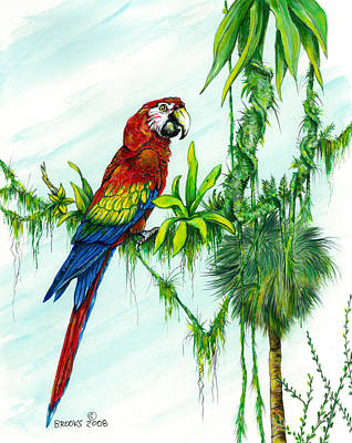 Macaw Mixed Media - Greetings From The Top by Richard Brooks