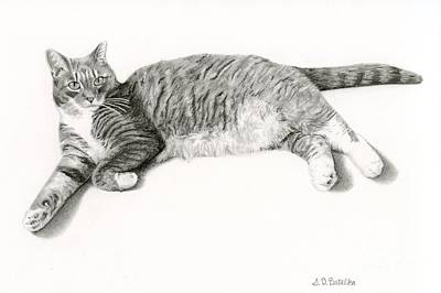 Cats Drawing - Frieda by Sarah Batalka