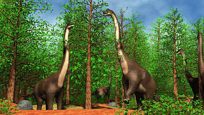 Triassic Photograph - Group Of Brachiosaurus Dinosaurs by Stocktrek Images