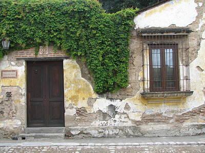 Vine Photograph - Guatemalan Home by Kara Morrison
