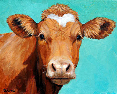 Guernsey Cow On Light Teal No Horns Print by Dottie Dracos