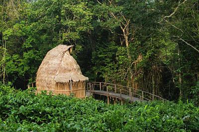 Congo Photograph - Guest Cabin, Ngaga Camp, Congo by Pete Oxford
