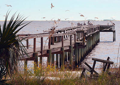 Abandoned Photograph - Gulf Coast Pier With A Gathering Of Birds by Carla Parris