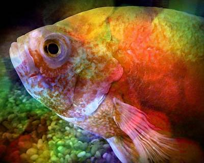Goldfish Digital Art - Gulpy by Patricia Strand