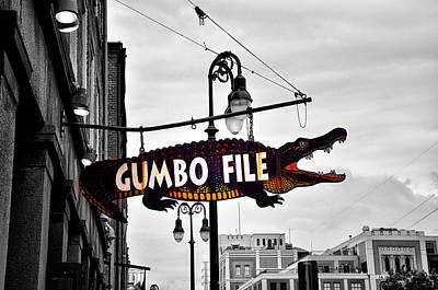 Aligator Photograph - Gumbo File by Bill Cannon
