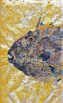 Gyotaku - Triggerfish - Oldwench -  Diptych 1  Original by Jeffrey Canha