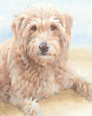 Hairy Sheepdog Watercolor Portrait Print by Mike Theuer