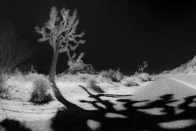 Desert Photograph - Halloween Crossing by Scott Campbell