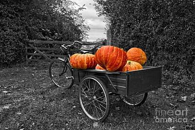 Halloween Harvest Print by Nick Wardekker