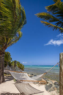 Photograph - Hammock On The Beach British Virgin Islands by Adam Romanowicz