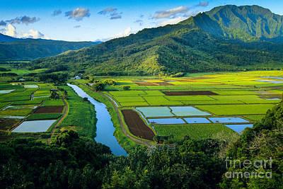 Kauai Photograph - Hanalei Valley by Inge Johnsson
