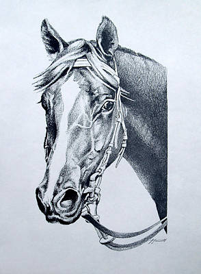 Portrait Drawing - Handsome by Patricia Howitt