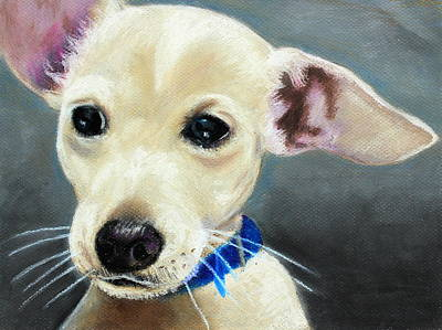 Dog Painting - Hank by Jeanne Fischer
