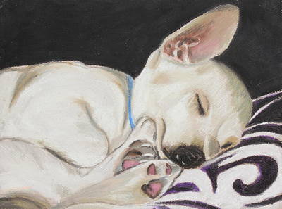 Dog Painting - Hanks Sleeping by Jeanne Fischer
