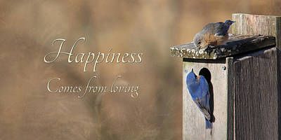 Bluebird Digital Art - Happiness Comes From Loving by Lori Deiter