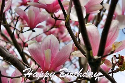Photograph - Happy Birthday by Judy Palkimas