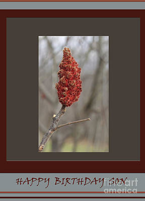 By Govan Vertical Format Photograph - Happy  Birthday  Son  -  Sumac  #1      by Andrew Govan Dantzler