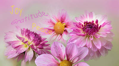 Raindrops On Flowers Photograph - Happy Dahlias by Angie Vogel