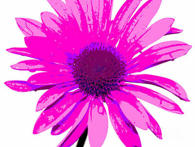 Nature Abstracts Photograph - Happy Pink by Krissy Katsimbras