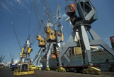 Harbour Cranes Print by Jim West