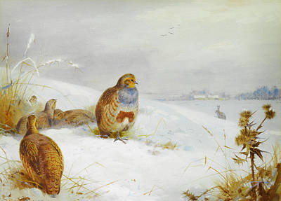 Blue Painting - Hard Times - Partridges And A Hare by Celestial Images