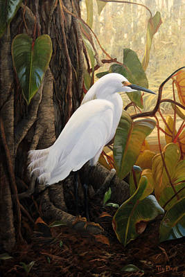 Egret Painting - Hard To Hide by Tim Davis