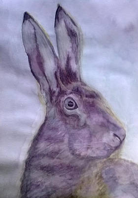 March Hare Painting - Hare by Natalie Holden