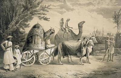 Cow Drawing - Harem Carriage Of The King Of Delhi by A. Soltykoff