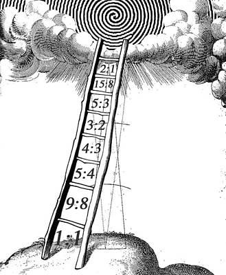 Visionary Art Drawing - Harmonic Ratio by Jeremy Johnson