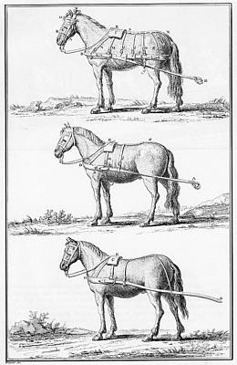 Harnesses, 18th Century Print by Granger