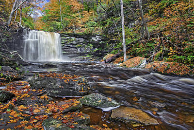 Best Photograph - Harrison Wrights Waterfall by Marcia Colelli