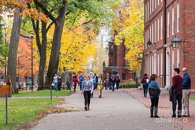Harvard Campus In Fall Print by Jannis Werner