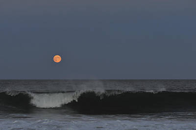 Sea Moon Full Moon Photograph - Harvest Moon Seaside Park Nj by Terry DeLuco