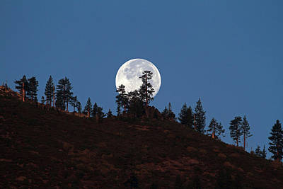 Harvest Moonset Print by Donna Kennedy