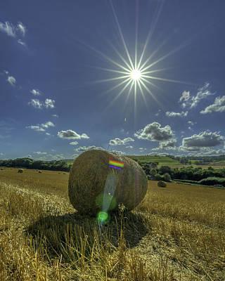 Harvest Sun Print by David Attenborough
