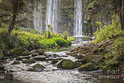 Cabbage Photograph - Hatea River And Whangarei Falls New Zealand by Colin and Linda McKie