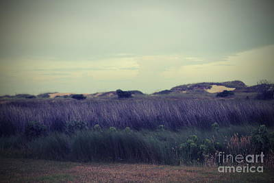 Relaxation Photograph - Hatteras Dunes And Grass by Cathy Lindsey