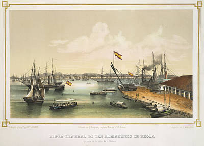 Havana Harbour Print by British Library
