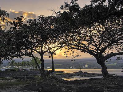 Hawaii Dog Photograph - Hawaiian Nights by Daniel Hagerman