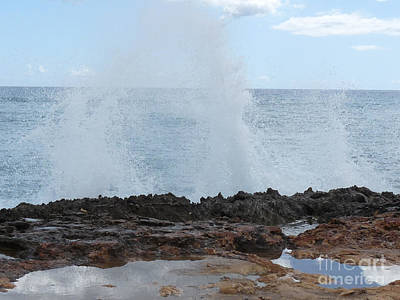 Marsh Photograph - Hawaiian Spumes by Deborah Smolinske