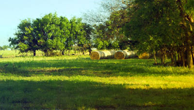 Hay Bales  Print by Ann Powell