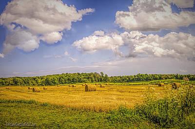 Bale Of Hay Print by LeeAnn McLaneGoetz McLaneGoetzStudioLLCcom