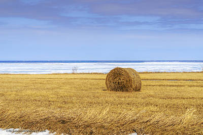 Hay Bales On Lake Huron Print by LeeAnn McLaneGoetz McLaneGoetzStudioLLCcom