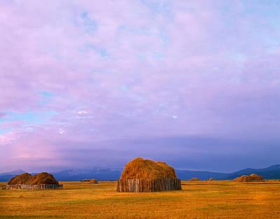 Hay Stacks Print by Leland D Howard